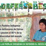 Defender con y a las comunidades defensoras de la naturaleza: Los pueblos indígenas de Paraguay